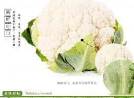 蔬菜保鲜库、有机菜花